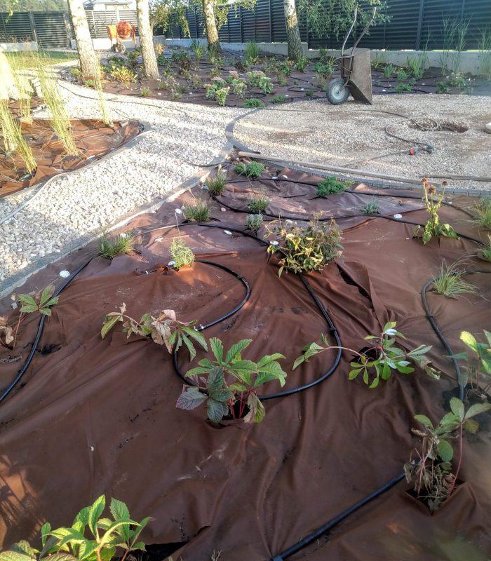 ogrodniczki 6
